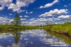 与河、森林、峭壁和波浪的夏天风景 免版税库存图片