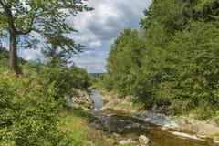 与河、森林和多云天空的夏日风景 免版税库存照片