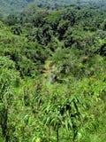 与河和山的热带风景 免版税库存照片