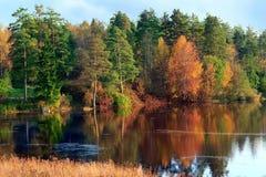 与河和森林的秋天风景 库存图片