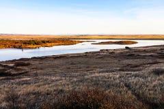 与河和灰色草的冰岛风景 图库摄影