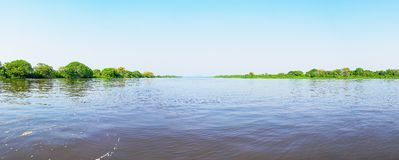与河和绿色植被的潘塔纳尔湿地风景 库存图片