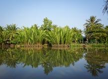 与河的农村场面在Sadek,越南 库存照片