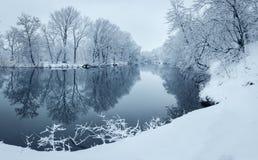 与河的冬天风景在森林里 免版税图库摄影
