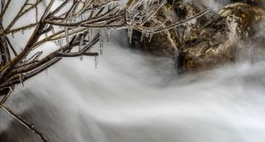 与河的在冬天树的场面在背景中和冰柱 库存照片