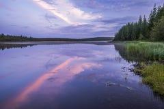 与河的夏天风景、多云天空、森林和草和花 免版税图库摄影