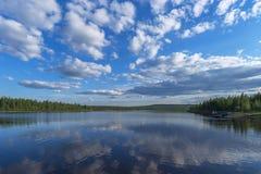 与河的夏天风景、多云天空、森林和草和花 免版税库存照片