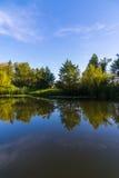 与河的夏天风景在中央俄罗斯 免版税库存照片