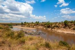 与河的大草原风景在肯尼亚的国家公园 免版税图库摄影