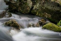 与河的生苔岩石 长期风险 免版税图库摄影