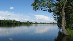 与河的美好的夏天横向 免版税库存照片