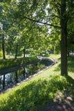 与河的风景在公园 免版税库存图片