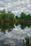 与河边的图象的风景 免版税库存照片