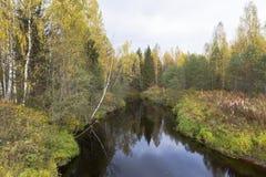 与河Kolenga的秋天风景在Verkhovazhsky区,沃洛格达州地区 免版税库存照片