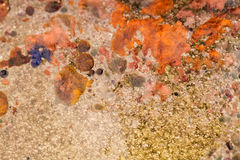 与油、水和墨水的混合的抽象构成与泡影 库存照片