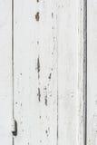 与油漆切削的和削皮的被风化的白色木门 库存图片