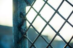 与油漆残滓的生锈的金属格栅 免版税库存照片
