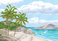 与沿海和棕榈树的热带背景 库存图片