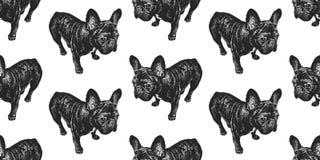 与法国牛头犬逗人喜爱的小狗的无缝的样式  库存例证