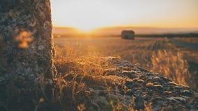 与泛光灯和背后照明的大气日落颜色 库存照片