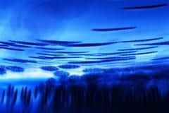 与泡影的抽象水下的比赛 免版税库存照片