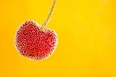 与泡影的樱桃果子 库存照片