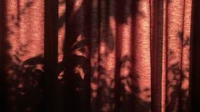 与泡影的煮沸的激昂的水在黑平底锅 影视素材