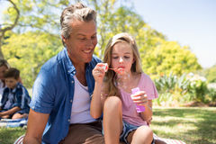 与泡影鞭子的父亲和女儿吹的泡影在野餐在公园 库存图片