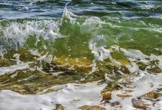 与泡沫的沿海透明海/海洋碰撞的波浪在它的上面 库存图片