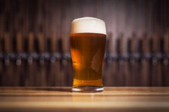 与泡沫的纯净啤酒在轻拍背景  免版税图库摄影