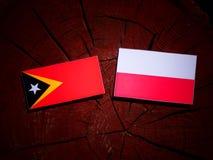 与波兰旗子的东帝汶旗子在被隔绝的树桩 库存例证