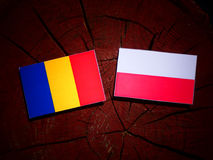 与波兰旗子的乍得旗子在被隔绝的树桩 向量例证