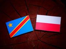 与波兰旗子的刚果民主共和国旗子在树 库存图片