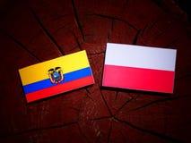 与波兰旗子的厄瓜多尔旗子在被隔绝的树桩 皇族释放例证