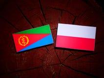 与波兰旗子的厄立特里亚旗子在被隔绝的树桩 库存例证