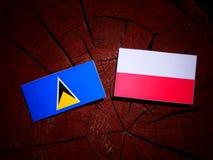 与波兰旗子的圣卢西亚旗子在被隔绝的树桩 向量例证