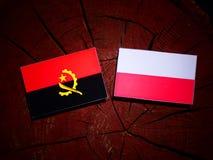 与波兰旗子的安哥拉旗子在被隔绝的树桩 向量例证