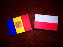 与波兰旗子的安道尔旗子在被隔绝的树桩 皇族释放例证
