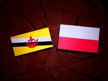 与波兰旗子的文莱旗子在被隔绝的树桩 库存例证