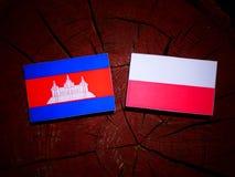 与波兰旗子的柬埔寨旗子在被隔绝的树桩 皇族释放例证