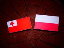 与波兰旗子的汤加旗子在被隔绝的树桩 向量例证
