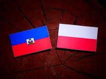 与波兰旗子的海地旗子在被隔绝的树桩 向量例证