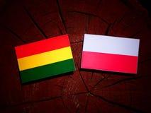 与波兰旗子的玻利维亚的旗子在被隔绝的树桩 皇族释放例证