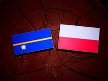 与波兰旗子的瑙鲁旗子在被隔绝的树桩 皇族释放例证