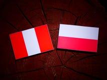 与波兰旗子的秘鲁旗子在被隔绝的树桩 向量例证