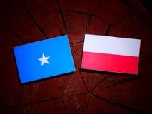与波兰旗子的索马里旗子在被隔绝的树桩 皇族释放例证