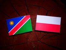 与波兰旗子的纳米比亚旗子在被隔绝的树桩 向量例证