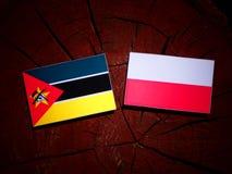 与波兰旗子的莫桑比克旗子在被隔绝的树桩 皇族释放例证