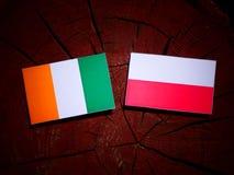 与波兰旗子的象牙海岸旗子在被隔绝的树桩 向量例证