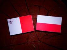 与波兰旗子的马尔他旗子在被隔绝的树桩 库存例证